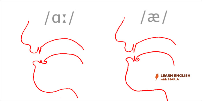 English pronunciation course - tongue composition